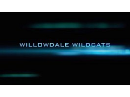 Willowdale Wildcats